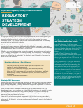 ra-2-Regulatory-Strategy-Development